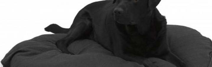 Hondenkussens Ovaal