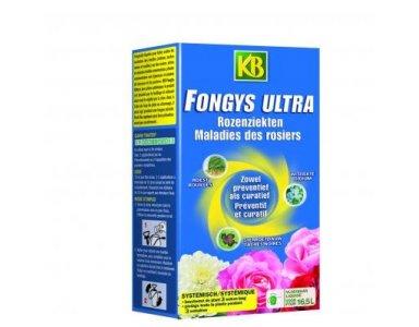 KB Fongys Ultra 250ml - foto 1