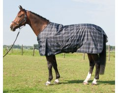 Harry's Horse Deken Thor 200gr Check Stretch Limo