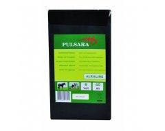 Pulsara Alkaline Batterij 6Volt, 40Ah