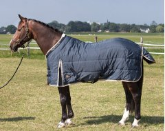 Harry's Horse Staldeken Highliner 200 Midnight Navy