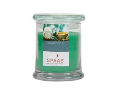Spaas Geurkaars in Glazen Pot Eucalyptus